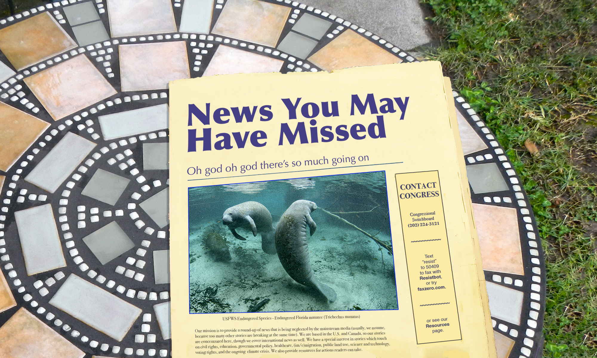 News You May Have Missed